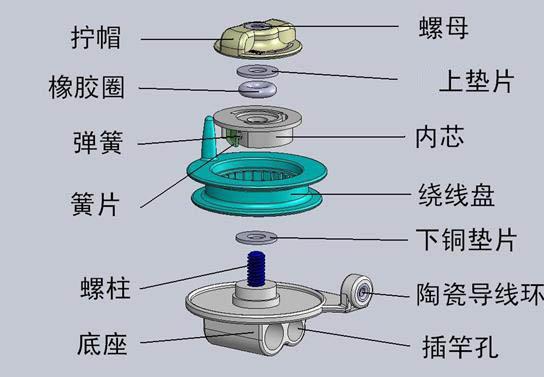 羊的基本结构图